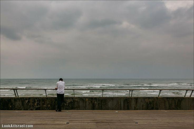 LookAtIsrael.com: Такой мечтатель (israel  тель авив такие разные люди порт моря и океаны люди )