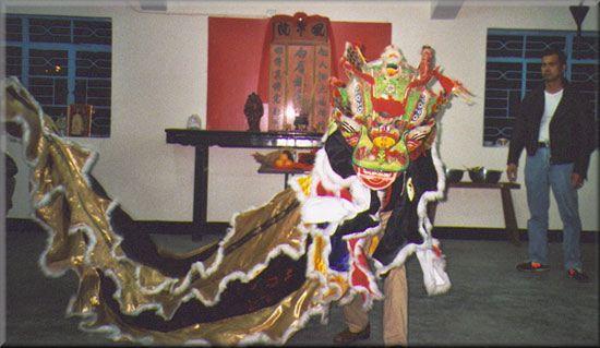 Pak Mei Kung Fu 白眉派