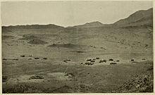 Island of Abd al Kuri - Yemen