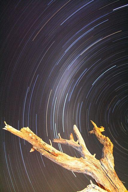 Starlight. © John McIlvaine
