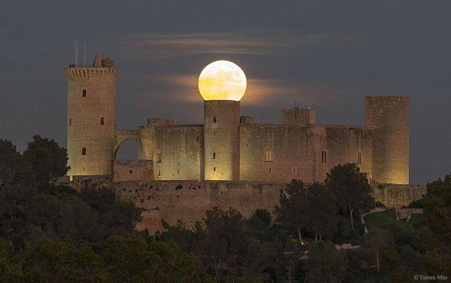 La Nasa se rinde al castillo de Bellver | diariodemallorca.es