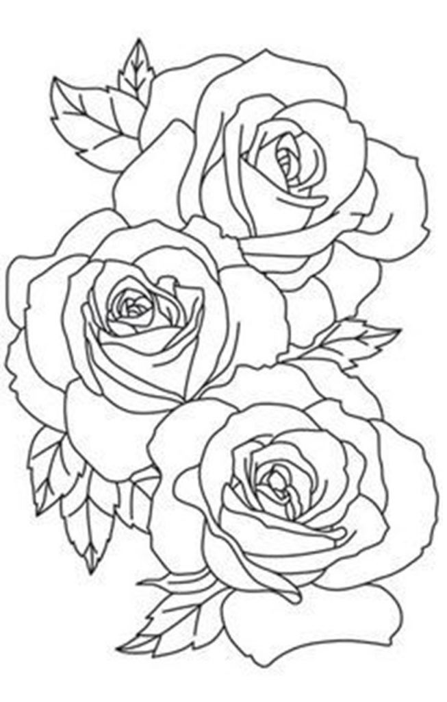 17 Rose Coloring Pages To Print In 2020 Rose Outline Tattoo Roses Drawing Flower Outline Tattoo
