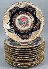 Set of 12 Black Knight Bavaria Plates