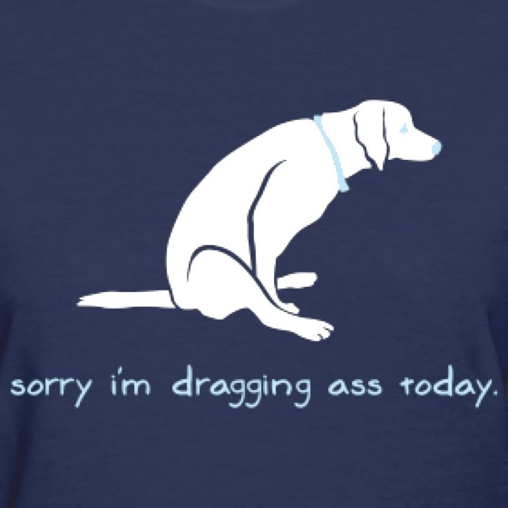 Funny-Best-Sayings-Life-Humorous-Hilarious-Quotes http://www.quotesonimages.com/2066/sorry-i-am-dragging
