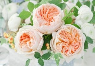 @April Flowers i found the name of the roses i like in bouquets! Juliet garden roses! lol