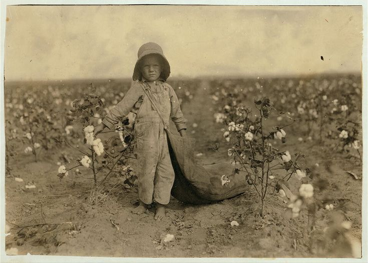 5-year old Harold Walker picking cotton, Comanche Co. OK, by Lewis W. Hine 1916 | Flickr - Photo Sharing!