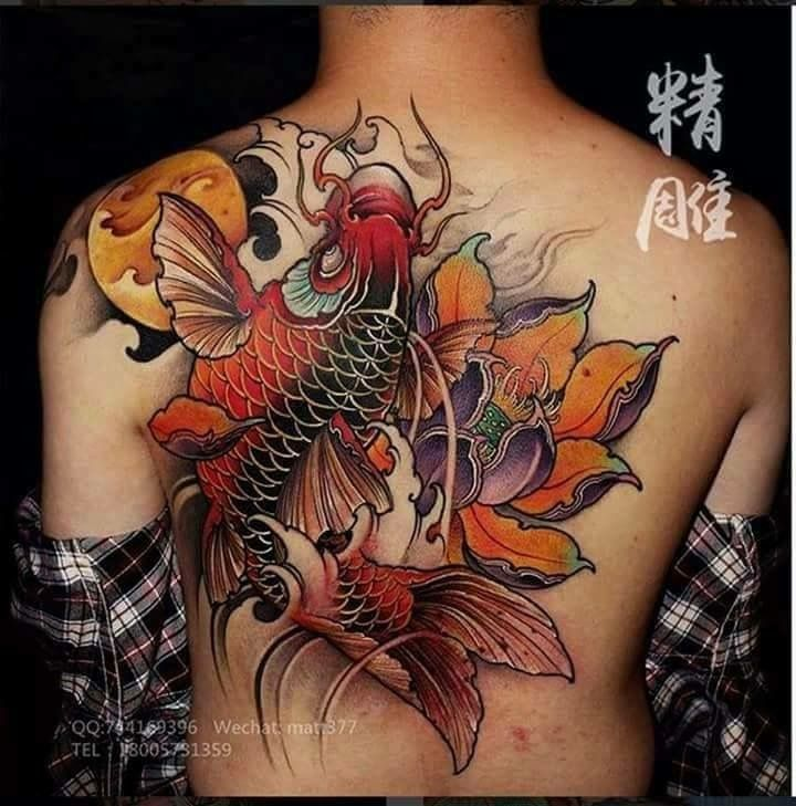 458 best images about koi on pinterest koi dragon tattoo for Best koi fish tattoo
