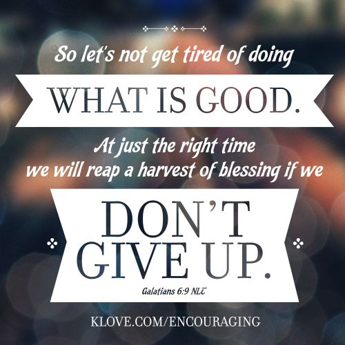 Bible Quotes Never Give Up: 72 Best Words To Live And Love By... Images On Pinterest