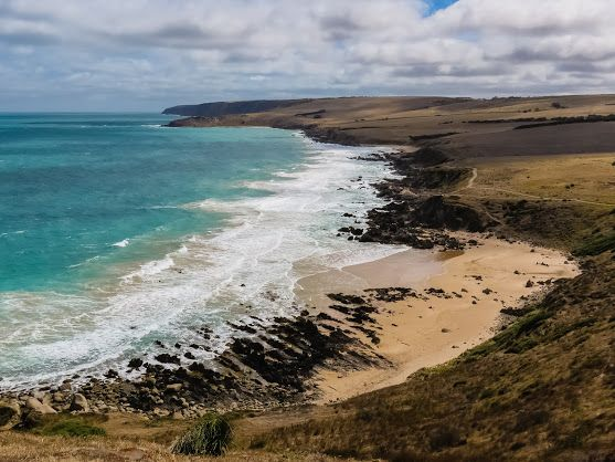 Petrel Cove (western side of The Bluff, Victor Harbor)