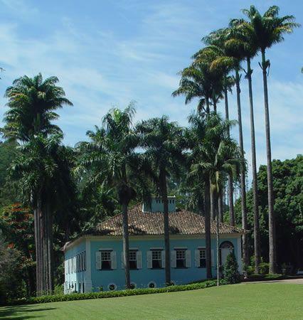Fazendas Paulistas O fazendeiro plantava um coqueiro para cada filho que nascia