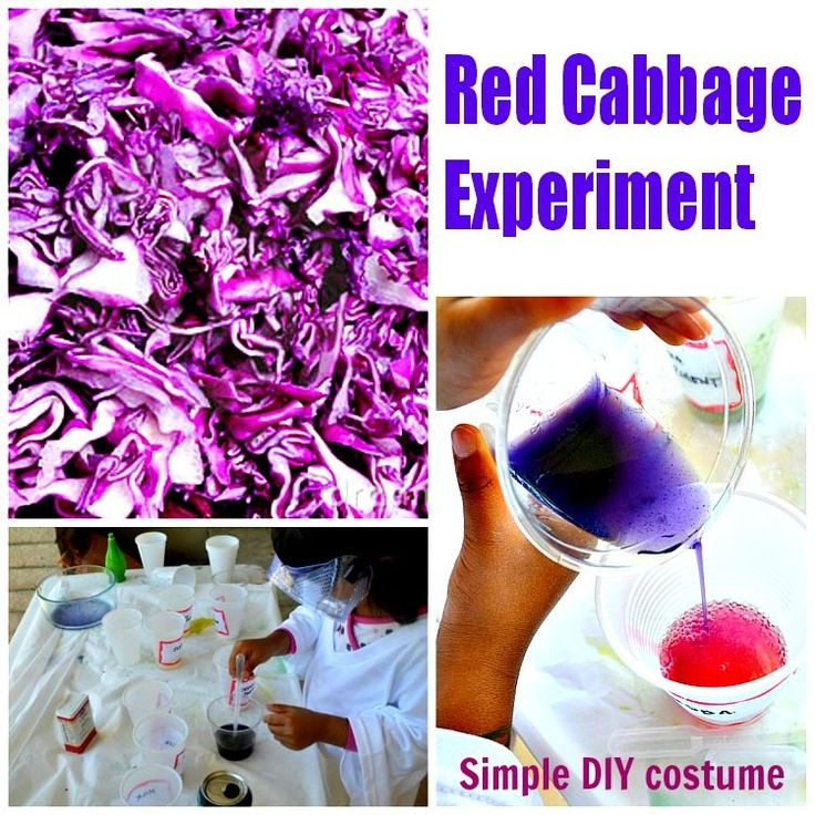 Science experiments for kids : Red Cabbage Experiment and scientist dramatic play