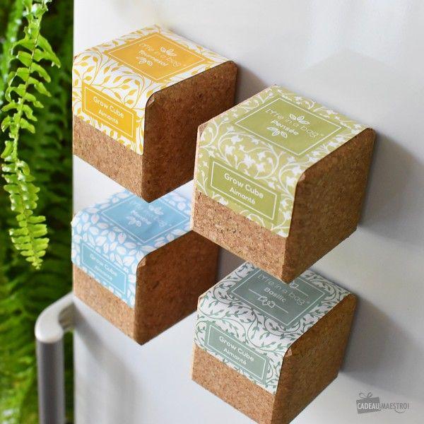 professional sale uk availability closer at Grow Cube Tournesol Aimanté | Jardinerie | Décoration maison ...