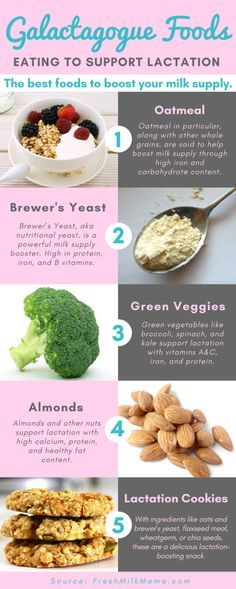 Galactagogue foods to boost breast milk supply. These foods help support breast milk supply in lactating, breastfeeding, and pumping moms. They are rich in nutrients, especially iron, vitamins a and c, calcium, and protein. An overview of the best foods to boost your breast milk supply and naturally support lactation.