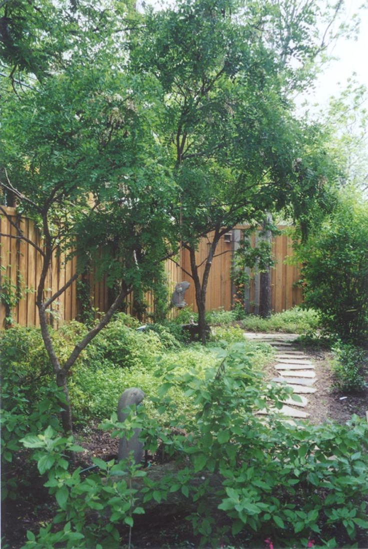 163 Best Backyard Landscape Ideas Images On Pinterest