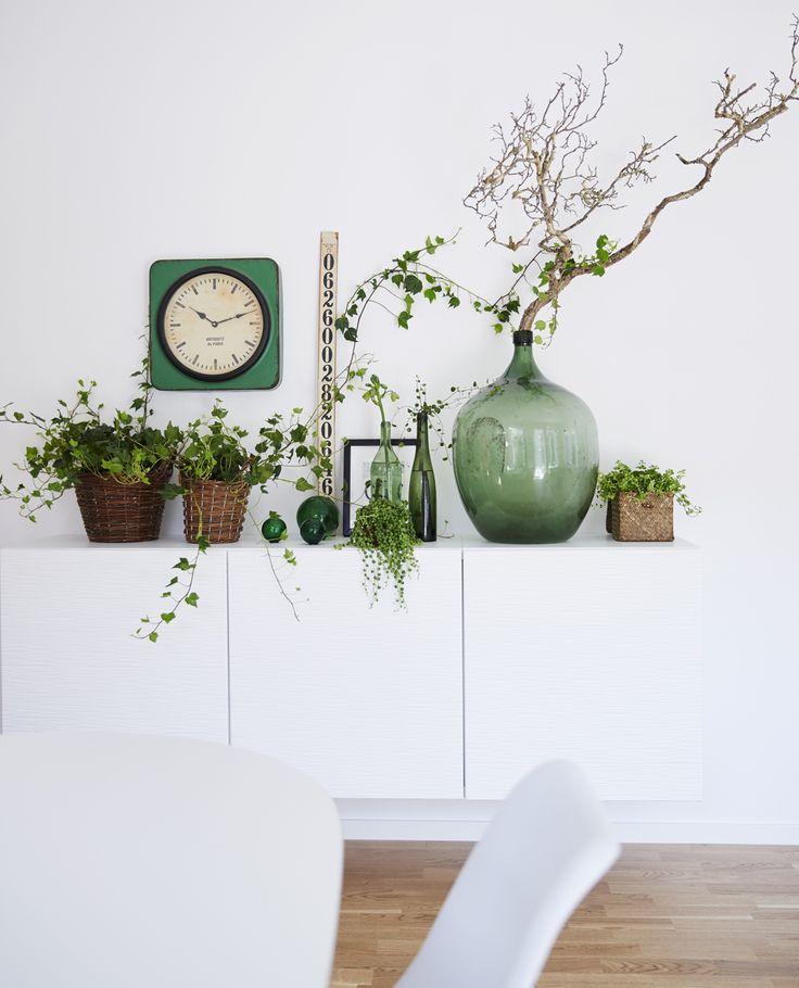 Stilleben med växter - inne. | photo: Blomsterfrämjandet / L. Arvidsson | via finrum.se