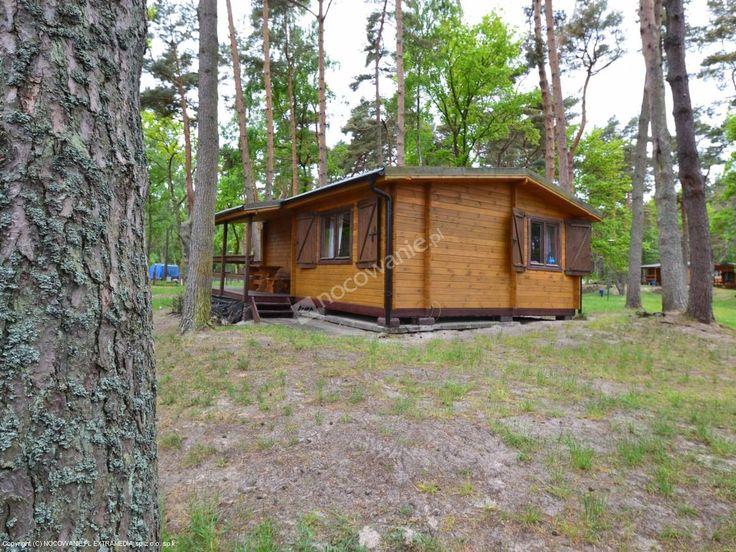 Kemping Łebski położony jest w lesie tuż przy plaży, od której dzieli go ochronny pasm wydm. Szczegóły: http://www.nocowanie.pl/noclegi/leba/domki/79878/ #nocowaniepl