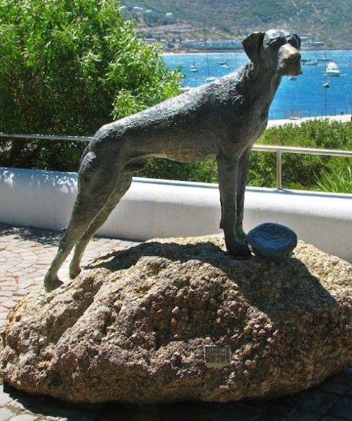 """JUST NUISANCE MEMORIAL Where: Simonstown, South Africa In Loving Memory: Just Nuisance is the only dog to ever be formerly enlisted in the Royal Navy. He became an official """"Able Seaman"""" to avoid getting hassled when the navy traveled. The Great Dane kept spirits up among the seamen and was known for easily breaking up drunken brawls."""