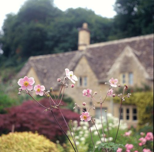 Cotswold Spring - Bilbury England