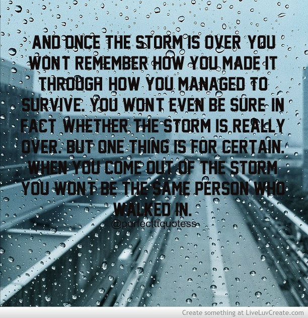 After The Storm Quotes by @quotesgram