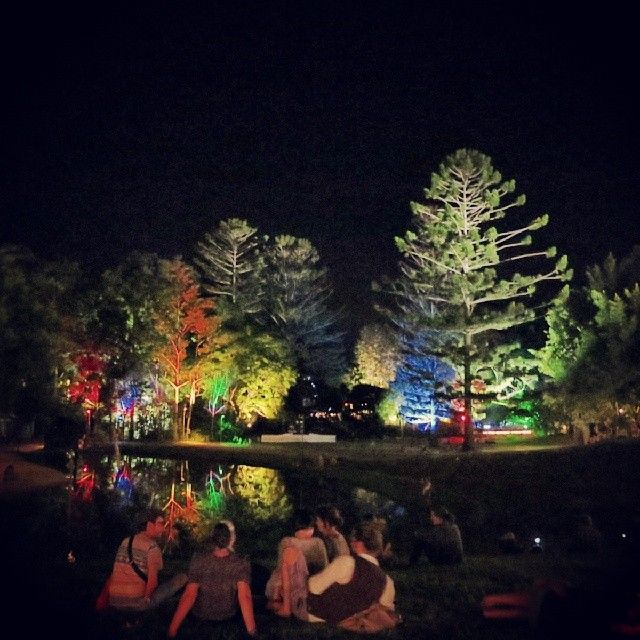 Colour lights and colourful people. @woodfordff #woodfordfolkfestival #woodford #boxingday