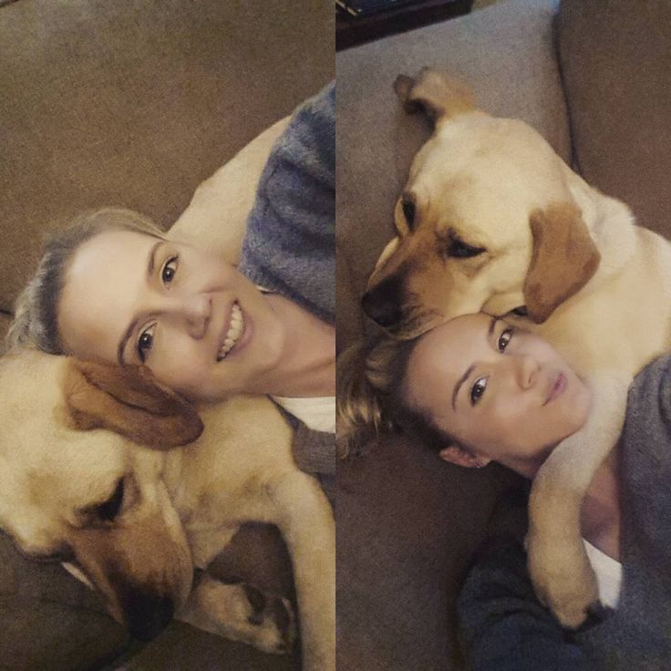Rainy day cuddles with my baby girl! #mommiesheart #somuchlove #lablove #doglove…