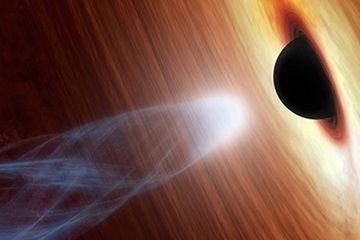 The cores of black holes may not hold points of infinite density as currently thought, but portals to elsewhere in the universe, theoretical physicists say.