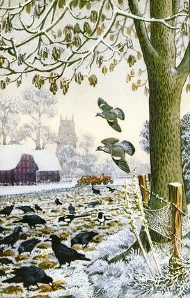 """Ash tree in a frosty farmer's field. There are magpies, rooks, jackdaws, starlings and wood pigeons looking for food."" From What to Look for in Winter, 1959, by E.L Grant-Watson, illustration by C.F. Tunnicliffe from the Ladybird Books Series"