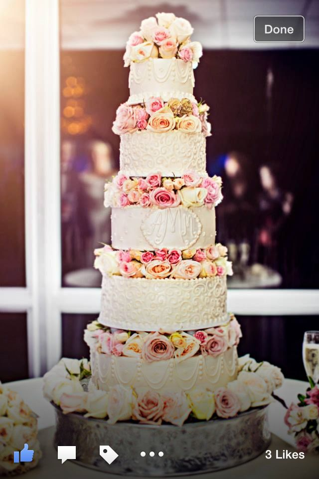 wedding cakes shreveport bossier 19 best gehl mcmillon wedding shreveport louisiana 25458