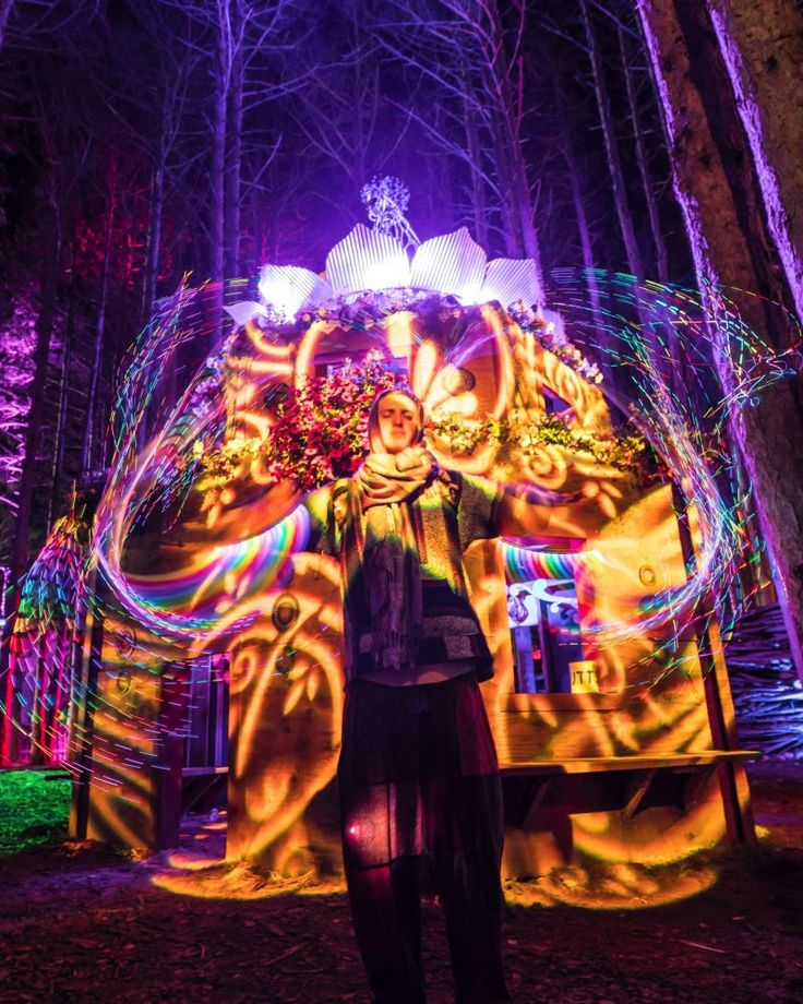 Forest History – Past Lineups, Photos, Videos & More | Electric Forest
