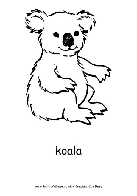 koala bear color page animal coloring pages coloring pages for kids thousands of free printable coloring pages for kids - Australia Coloring Pages Kids