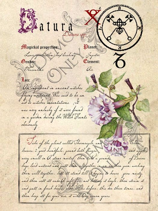 Grimoire, Spell, Herbs and Book of Shadows Pages, Practical Magic; The Cackling Cauldron ~ Book of Shadows: Spell set 2 – Винтаж