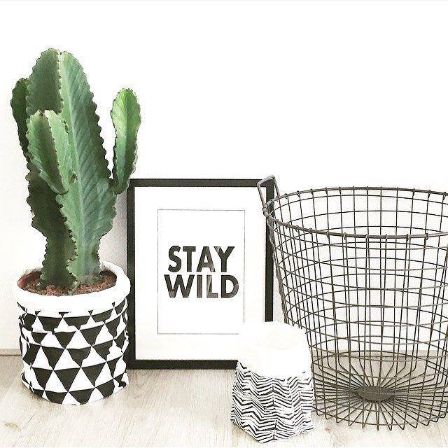 Zwart, wit en een prachtige cactus. De opbergzakken (je ziet: ook heel leuk om een plantenpot) zijn van #wonenvoorjou