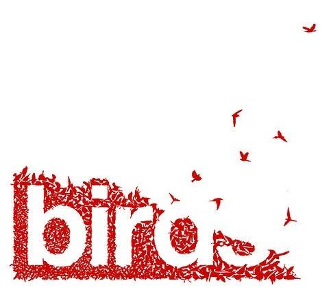 birds. #typography #type #design