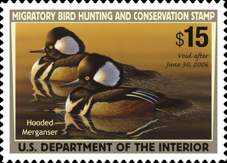 duck stamps | Duck Stamp