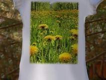 koszulka-Wiosna