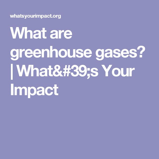 What are greenhouse gases? | What's Your Impact