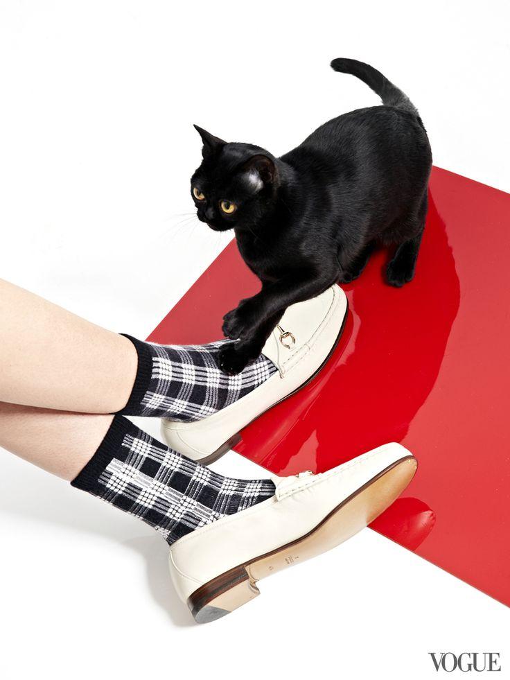 Этой весной американский журнал Vogue решил совместить в одной фотосессии сразу две вещи, перед которыми не может устоять ни одна женщина: котов и обувь! Проект под названием 'The Cat and the Flat' объединил самые модные и популярные пары обуви на плоской подошве с очаровательными котами и котятами из приютов. Всего было снято 31 фото (по количеству дней в марте).