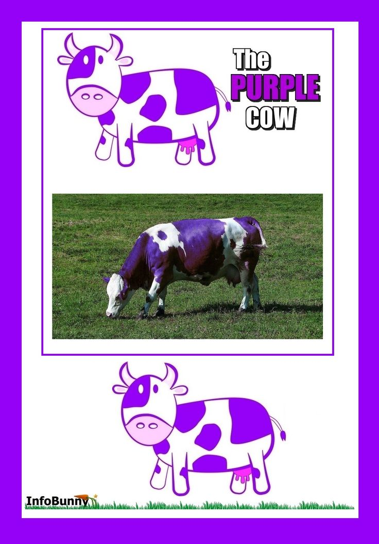 The Purple Cow, The Customer And The Organization #business #blogging #homebusiness #bloggingtips
