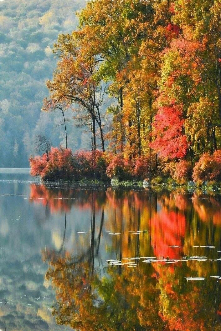 Fall Lake Landscape Lakelife Fall Landscape Photography Autumn Scenery Autumn Landscape