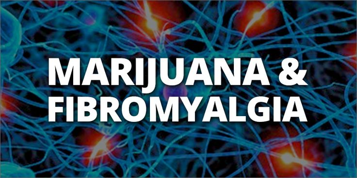 "Fibromyalgia: Is Marijuana The Best Treatment? | ""Marijuana is outpacing prescription drugs when it comes to fibromyalgia relief. This phenomenon isn't surprising; researchers have been pushing for cannabis-based therapies for the disease for over the past 12 years. Luckily, there are now more options than ever for patients hoping to kick narcotics and find relief in a more natural and effective way."" Click to read and share the full article with video (2:30)."