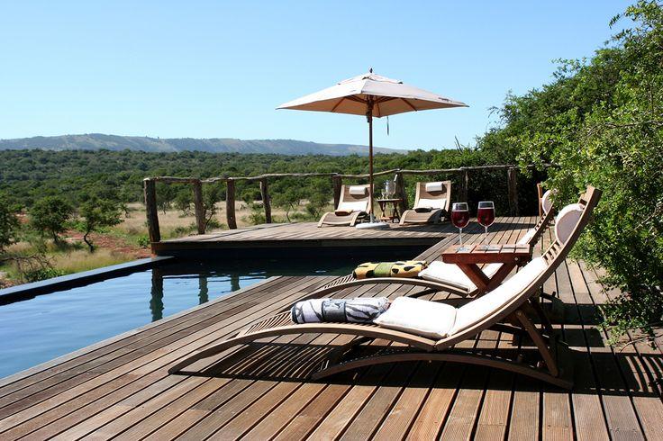 Luxury Safari destination in South Africa. Pumba Private Game Reserve - Bush Lodge