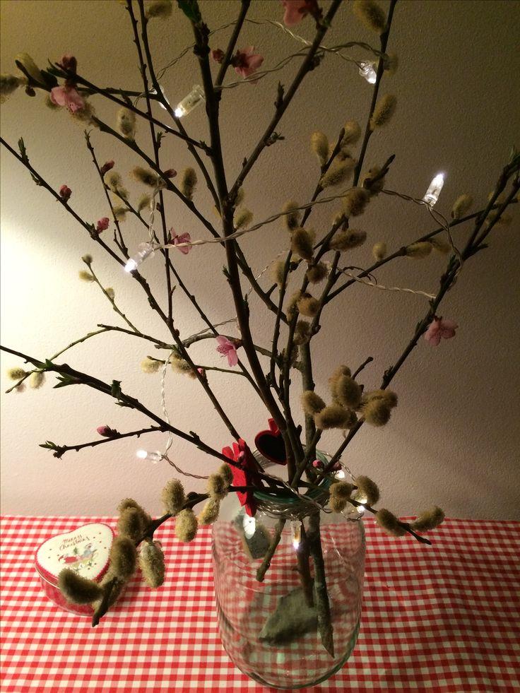 Gemme di Roverella,fiori di pesco e luci