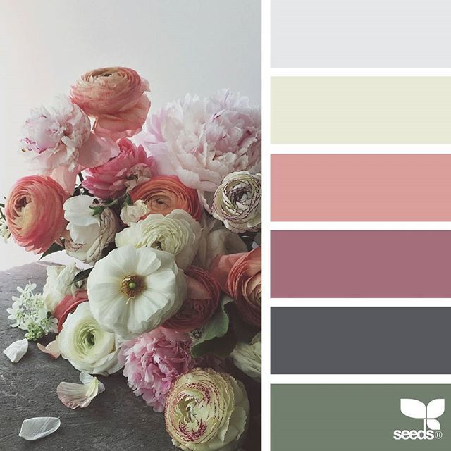 today's inspiration image for { flora hues } is by @natashakolenko ... thank you, Natasha, for another gorgeous #SeedsColor image share!