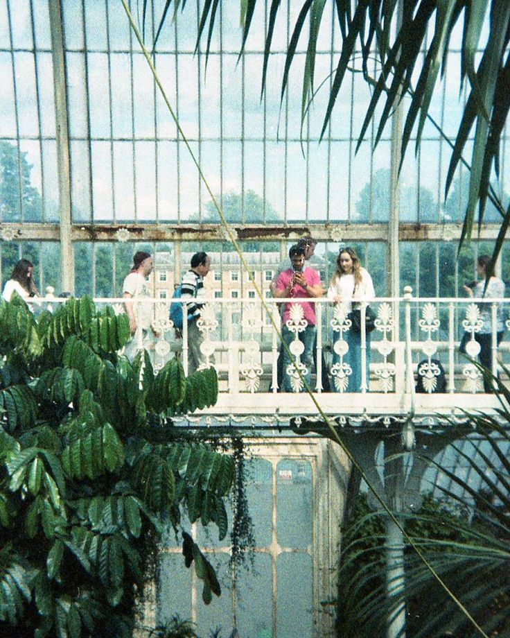 #lomo #lomography #35mm #film #analoguephotography #holga #symmetry #architecture #gardens #greenhouse #london #botanicgarden #travel #ishootfilm