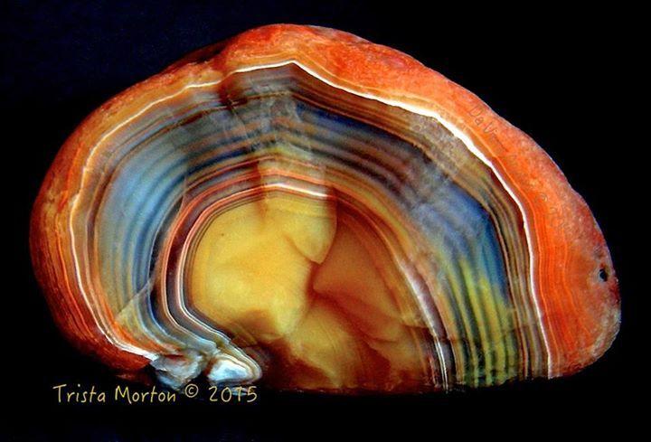 Lake Superior Agate, USA. Rare bright colors. Coll Trista Morton