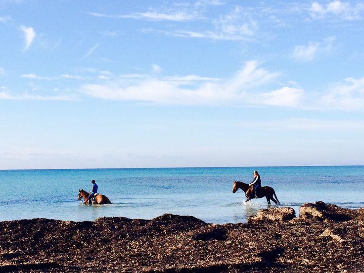 #riding #mallorca