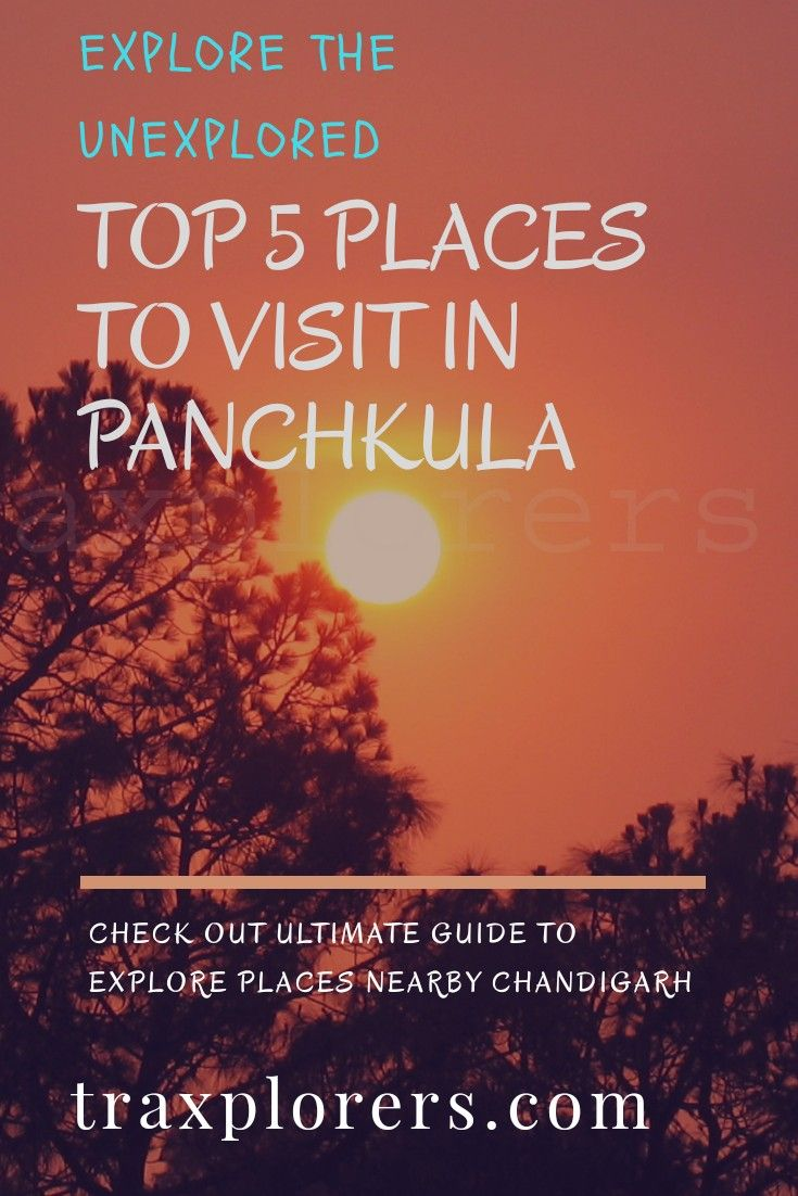 Must Visit Places In Chandigarh India Cool Places To Visit Tourist Places World Travel Guide