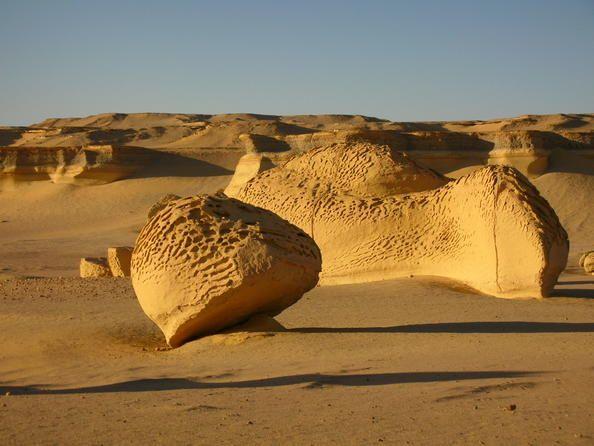 Egipto 07 Uadi Al Hitan (El Valle de las Ballenas) El sitio de Uadi Al Hitan –el Valle de las Ballenas– está situado en el desierto occidental de Egipto y posee inestimables restos fósiles de arqueocetos, cetáceos de un orden específico antiquísimo, hoy en día extinguido. Los fósiles de las ballenas de Uadi Al Hitan son testigos de una importante etapa de la evolución de las especies: el paso de estos mamíferos –que vivían en un medio terrestre– a su vida actual en el medio oceánico.