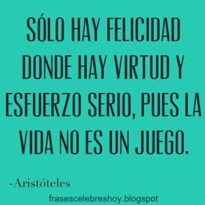 blogger-image-frase-cita-celebre-felicidad-aristoteles.jpg (300×300)