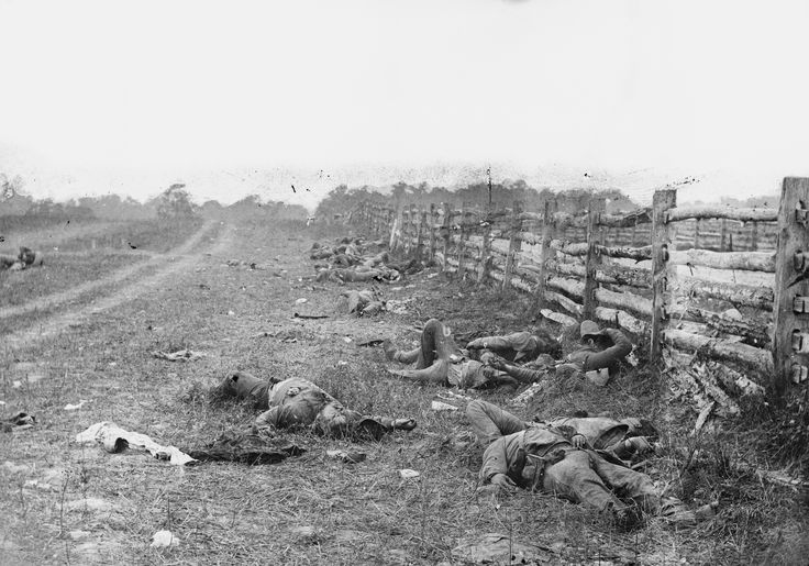 Dead Confederate soldiers near Dunker Church following the Battle of Antietam. Photograph by Alexander Gardner